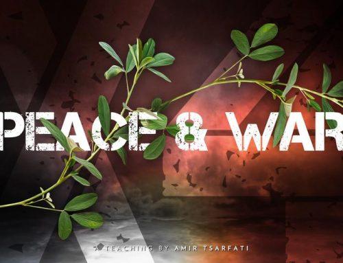 Peace & War X4