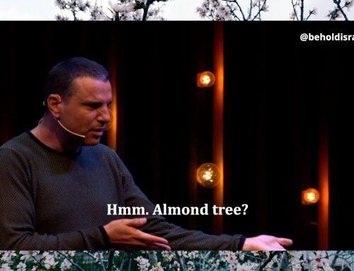 Why Like an Almond Tree?