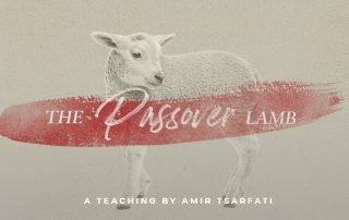 The Passover Lamb teaching by Amir Tsarfati